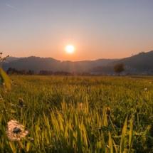 Siensbach-Sonnenuntergang