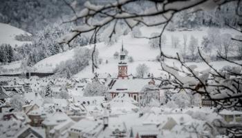 Waldkirch im Winter