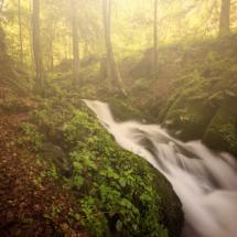 Wasser Stampfbach