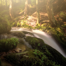Wasserfall Love