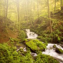 Wasserfall Stampfbach