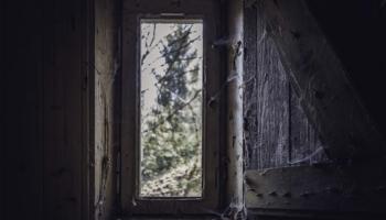 Die Hütte im Wald-14