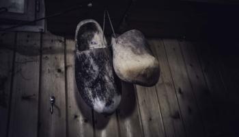 Die Hütte im Wald-17