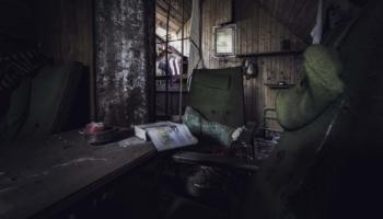 Die Hütte im Wald-19