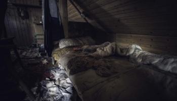 Die Hütte im Wald-22