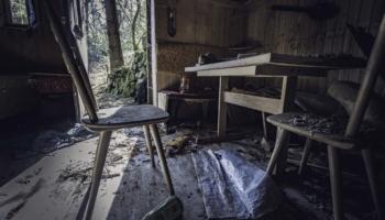 Die Hütte im Wald-5